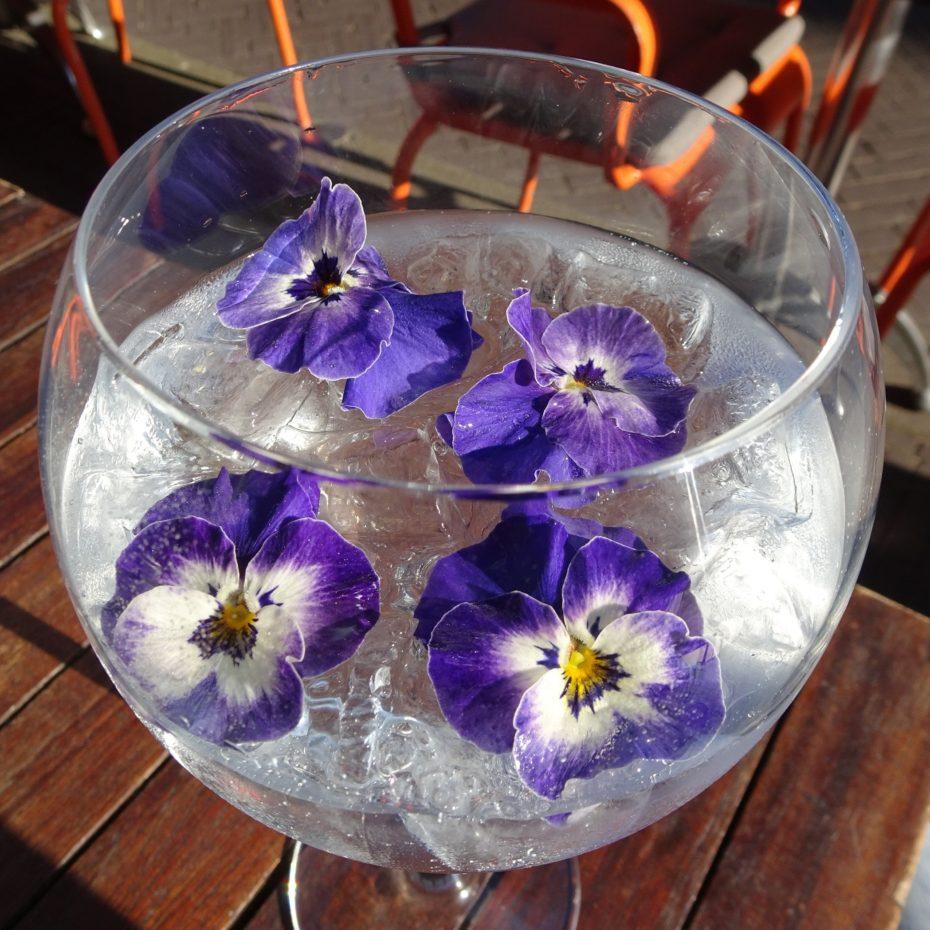 Gin&Violets